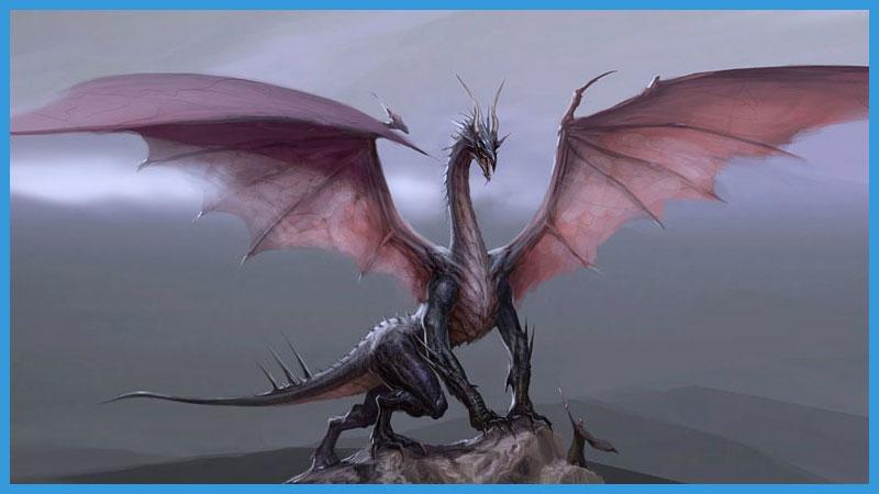 китайский календарь качества дракона